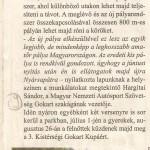 cikk 8